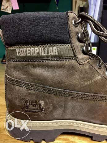 Cat men shoes - Caterpillar original