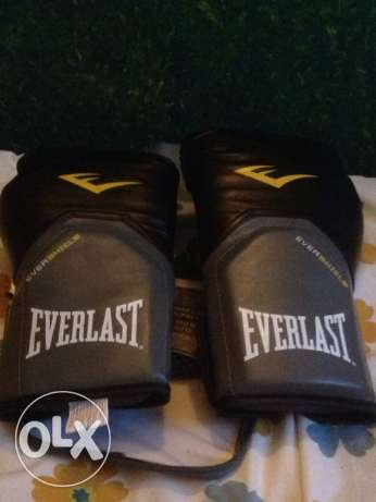 Everlast pro boxing gloves (NEW)