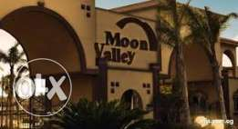 twin house moon valley 2