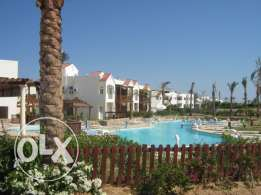One bedroom apartments in Goldsharm Residence For Rent