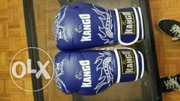 Kango boxing gloves