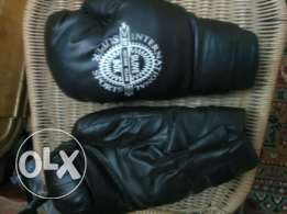 Box Gloves