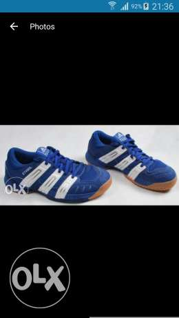 Looking for adidas stabil any colour