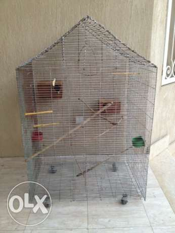 XL Bird cage with accessories