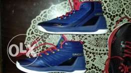 UA Curry Series