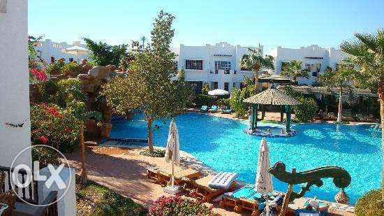 Studio Appartment in Delta Sharm for Sale فيصل -  2