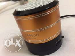 Leeson Bluetooth Speaker - Black/Gold