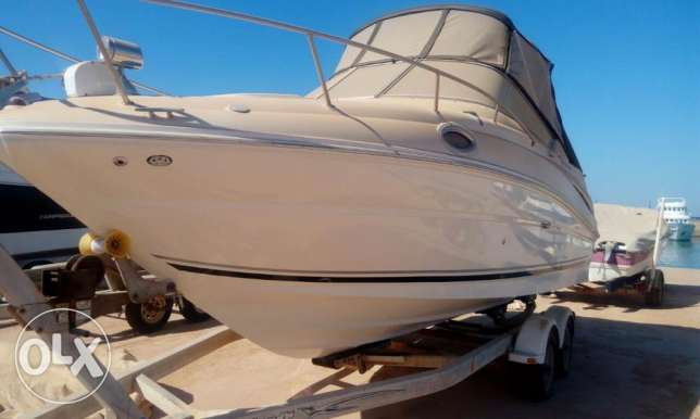 يخت searay 24.5' sundancer mint condition العين السخنة -  2