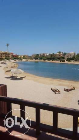 Bargain El Gouna Apartment For Sale الغردقة - أخرى -  1