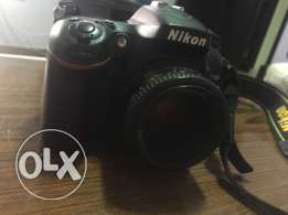 Nikon D7100 .. With lens 50mm niko .. with box and all acc .. نيكون