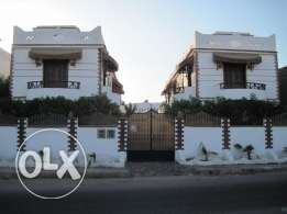 for sale: nice and cozy flat in Dahab / Medina