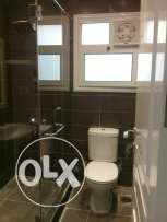 Fully furnished deuluxe apartment for rent