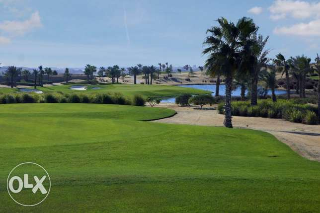 Amazing twin house for sale 1st row golf, lake in golf views palm hill