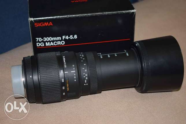 sigma lens 70-300 for Nikon auto focus with macro الإسكندرية -  4