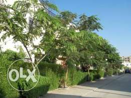 Villa for Rent 2500 EGP Only Monthly Rent !!!