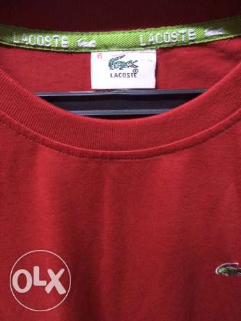 Lacoste T-shirt for sale حلوان -  1