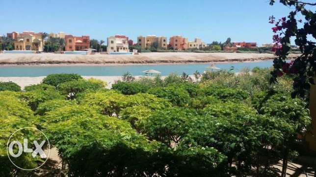 2 bedroom apartment, ground floor in West Golf, El Gouna الغردقة -  1