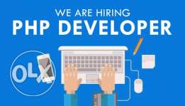 PHP Web Developer for a reputable company