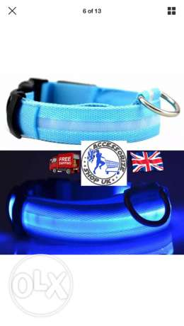 Led dog collar flashing luminous adjustable safety light up nylon tag
