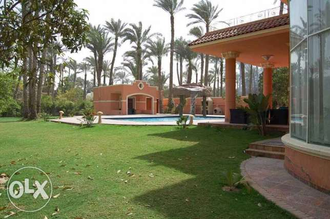 villa for rent at zayed