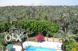 Amazing Villa and Land in Haram / Mansouria total area of 16,800m