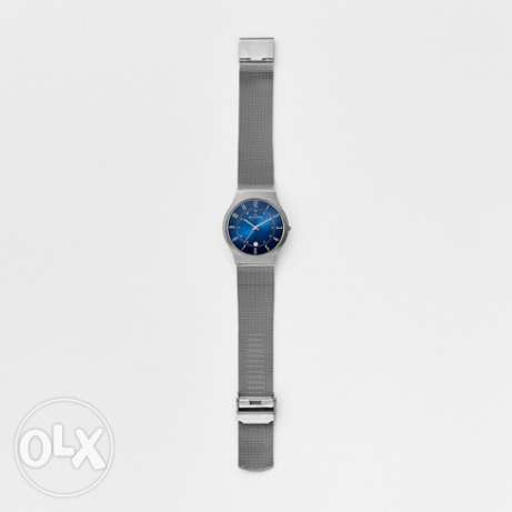 Skagen Denemark Watch