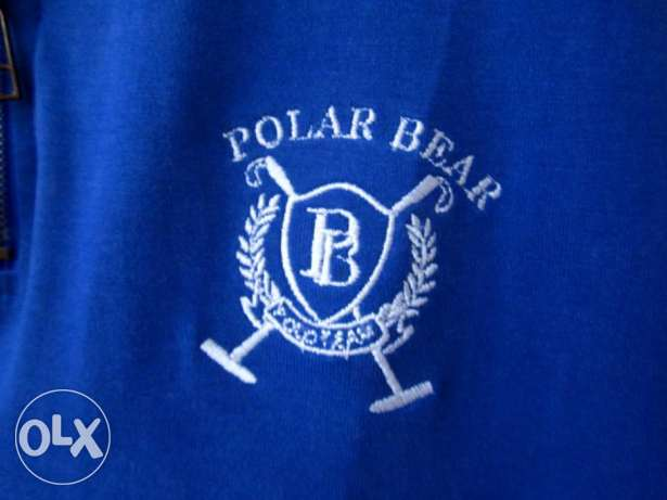 shirt Brand Polar Bear Blue Medium المعادي -  4