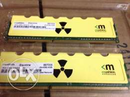 Mushkin Enhanced Radioactive 8GB (2 x 4GB) DDR3 1600 رامات