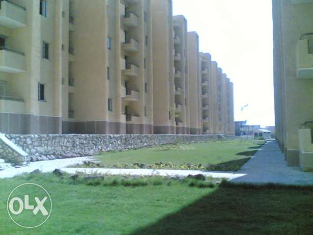 Apartment for Rent in Zayed City الشيخ زايد -  1