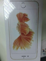 I phone 6s 64 GB Golden Rose