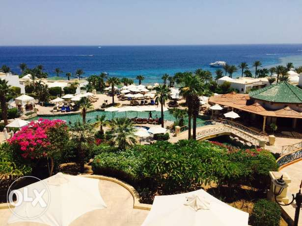 1 week for 4 adults at Domina Coral Bay in Sharm El Sheikh