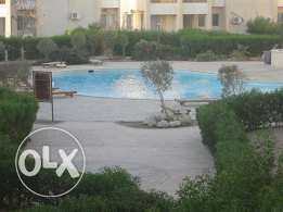 sharm el sheikh apartment fully furnished for sale شقة بشرم الشيخ غرفت