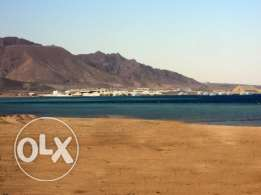 For SALE Land in Safaga