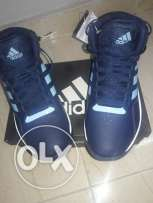 New Adidas Basket From USA