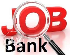 Call Center Agent (Governmental Bank in Egypt) القاهرة -  1