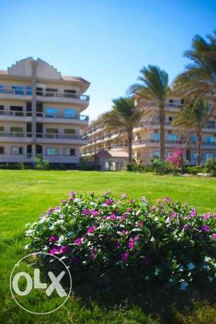Hot Offer Apartment for sale in Nour Plaza resort 82m2 Garden view الغردقة -  4