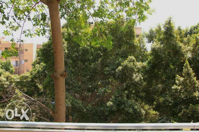 Apartment for Rent in Degla maadi المعادي -  7