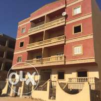 Apartment for Sale in Zayed - 16th District
