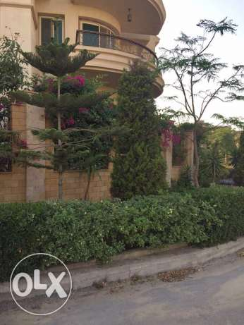 Stand alone villa for rent for long time