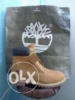 000Mens Shoes(Timberland )