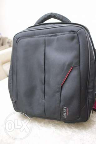 Delsey laptop bags 15.4""