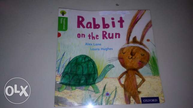 Rabbit in the run