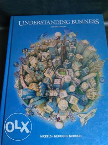 Understanding Business 2nd Edition