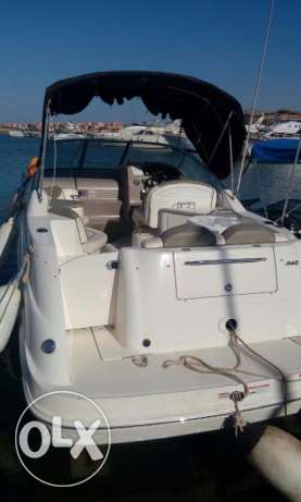 يخت searay 24.5' sundancer mint condition العين السخنة -  3