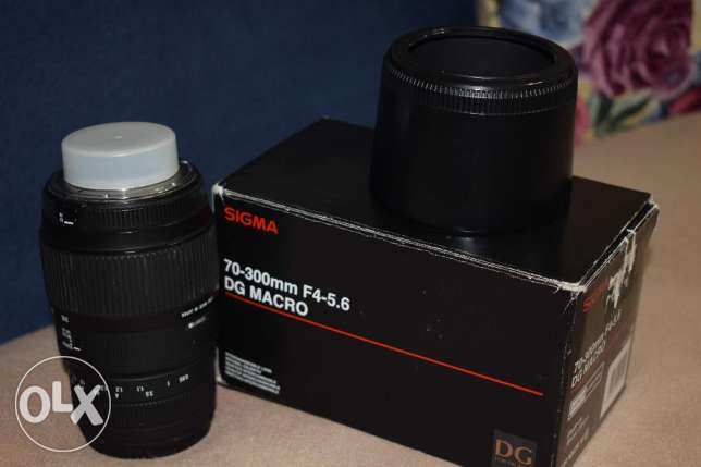 sigma lens 70-300 for Nikon auto focus with macro الإسكندرية -  1