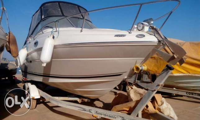 يخت searay 24.5' sundancer mint condition العين السخنة -  4