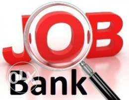 Call Center Agent (Governmental Bank in Egypt)