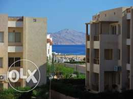 For rent nice apartment in Sharm el Sheikh