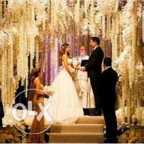 Assistant wedding planner (female)