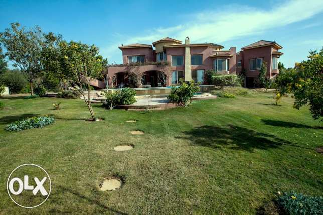 Villa in Ofok for Sale or Rent